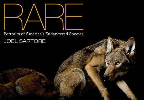 Rare: Portraits of America's Endangered Species por Joel Sartore