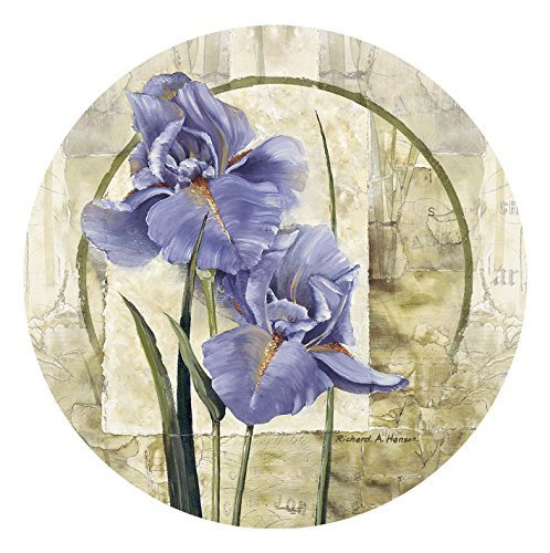 Thirstystone 4-Piece Iris in Bloom Coaster Set by Thirstystone Iris Coaster