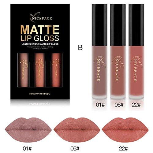 Lip Pigment (3 Farben / Set Matte Nebel Flüssig Lippenstift Set OYOTRIC Langlebige Antihaft Tasse Lip Gloss Set Wasserdicht Bilden Pigments Samt Rot Lila Lipgloss Kit)