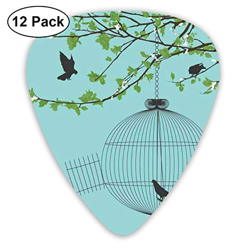 Celluloid Guitar Picks - 12 Pack,Abstract Art Colorful Designs,Vintage Style Open Birdcage Hanging From A Spring Branch With Fresh Green Leaves,For Bass Electric & Acoustic Guitars.