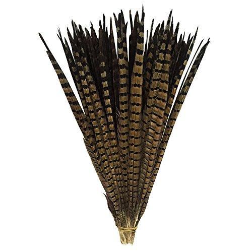 TEFOMATE 100 Stück Fasanenfedern 35-40cm Fasan Feder Schwanzfedern Echte Hutfeder