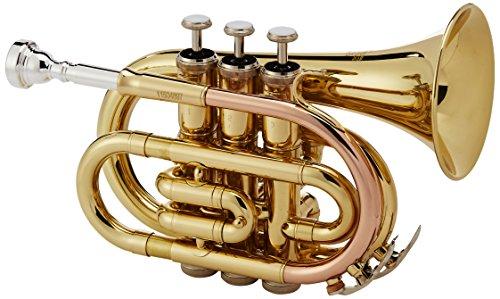 Roy Benson PT-101 Trompette de poche Sib Transparente