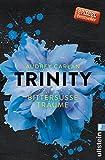 Trinity - Bittersüße Träume (Die Trinity-Serie, Band 4) - Audrey Carlan