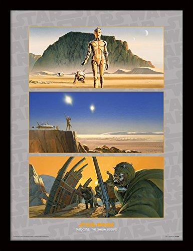 Pyramid International FP11351P-PL Star Wars (Tatooine: The Saga begins) gerahmter Druck, 250 gsm Paperwrap MDF, mehrfarbig, 44 x 33 x 4 cm (Saga Fox)