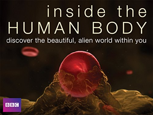 Inside the Human Body - Episode 4 Amazon Video