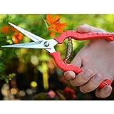 Wuudi Forbici da potatura in acciaio INOX Garden Hand Pruner forbici multiuso per raccolta frutta verdura utensili per giardinaggio