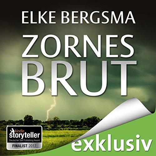 Zornesbrut (Büttner und Hasenkrug ermitteln 17): Ein Ostfrieslandkrimi