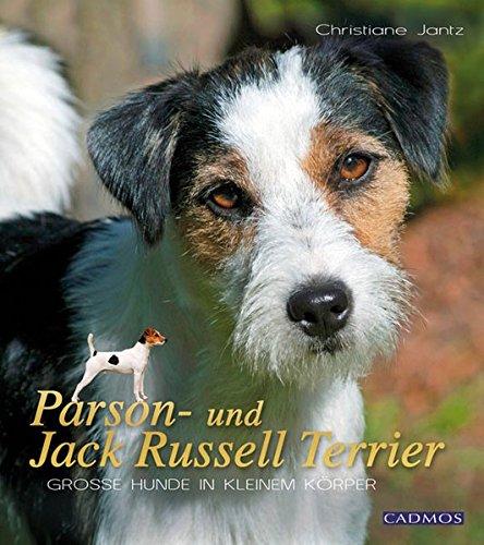 Produktbild bei Amazon - Parson- und Jack Russell Terrier: Große Hunde im kleinen Körper
