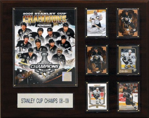 C & I Collectables NHL Penguins 2008-09 Stanley Cup Champions Plakette