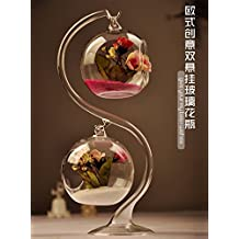 Jarrón de Flores Doble Forma de Bola Botella de Cristal Micro Paisaje Terrario + Soporte de Ayuda