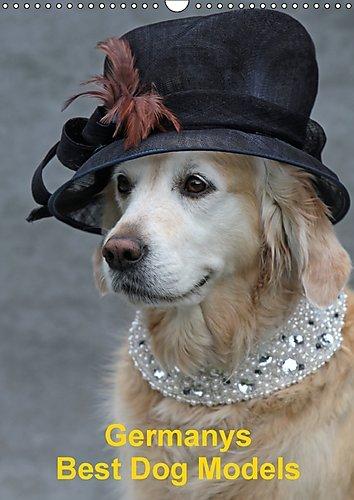 Germanys Best Dog Models - gestylte Labrador und Golden Retriever (Wandkalender 2017 DIN A3 hoch): Ungewöhnliche und ausdrucksstarke Bilder von ... (Monatskalender, 14 Seiten ) (CALVENDO Tiere)