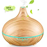 Aromatherapy Diffusers - Best Reviews Guide