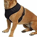 iiniim Haustier Harness Hund Netz Hundegeschirr Welpengeschirr Weste Hundehalsband Verstellbare Brustgeschirr für Hunde Mehrfabig Schwarz Small
