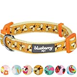 Blueberry Pet New Statement Busy Bees Designer Dog Collar, Small, Neck 30cm-40cm, Adjustable Collars for Dogs