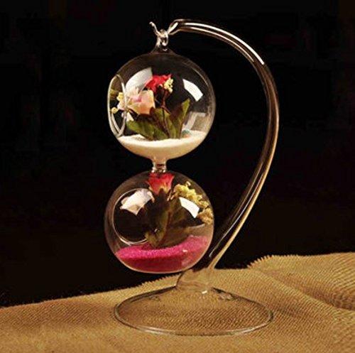 hängenden Kugel Form Glas Hydrokultur Vase DIY Micro Landschaft Flasche Home Garden Party Dekoration von shopidea
