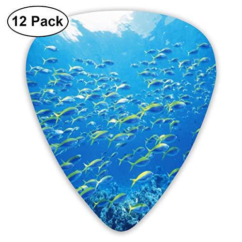 Lachs Pazifik 351 form klassische celluloid plektrum für elektrische akustische mandoline bass 0,46mm 0,73mm 0,96mm (12 count) Lachs-tag