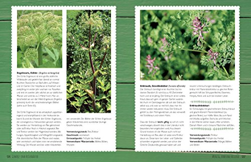 Der Bio-Kräutergarten der Kräuter-Liesel: Anbau – Pflege – Ernte - 6