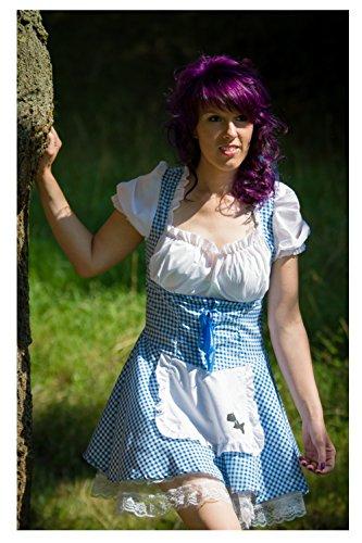 Dirndl blau-weiß kariert Größe 42 Spitze Oktoberfest Tracht Festbekleidung Damenkleid für Erwachsene