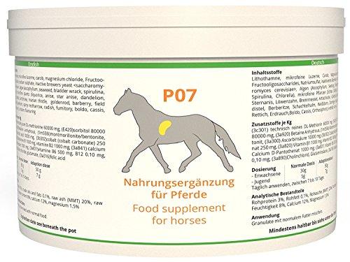 Schwere Leber - (WW7 Pferd P7 / Leber Augen Verdauung Entzündung [Kräuter] 1 kg)