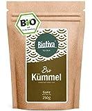CUMINO INTERI (250g, Bio) // 100% organico cyminum (DE-ÖKO-005) - Tè superiore premio alla qualità (Baby té) o la liquidazione - Intenso nel sapore e gusto - Allevia addominale e lo stomaco disagio