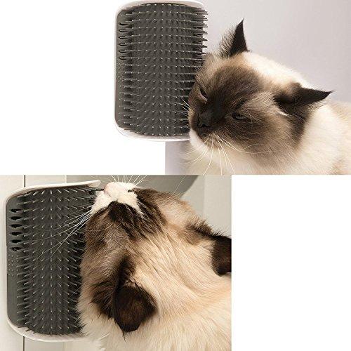 lnsky2018 Katze mit Pflege mit Catnip, perfekt in der Ecke Katze, die über die Tür, Groomer-Massage-Kamm, Pflege-Massagegerät für lange und kurze für Katzen/Hunde/Pferde