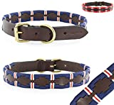Pear - Tannery Polo-Line Hundehalsband aus weichem Vollrindleder, S 33-43cm, blau