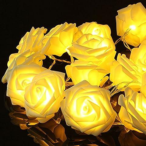 Bluelover 20 Led Romantique Rose Flower Fairy Electrique Pour Wedding Party-Warm Blanc