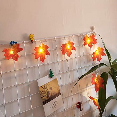 Lichterkette,FeiliandaJJ 1.5M 10pc Ahornblatt Lichterkette LED Licht Hochzeit Party Weihnachten Halloween Innen/Außen Haus Deko String Lights 2XAA Batterien (B)