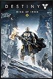 Close Up Destiny Poster Rise of Iron (93x62 cm) gerahmt in: Rahmen schwarz