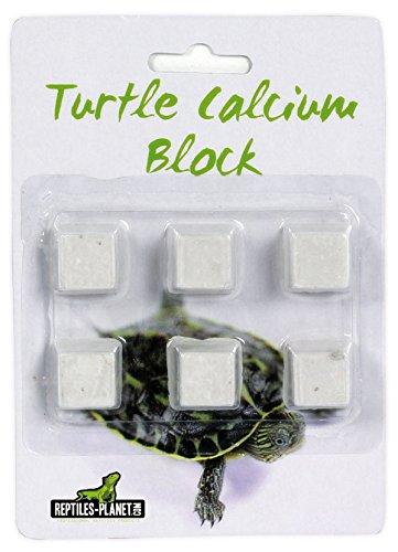 Turtle Calcium Block -