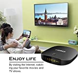 T95D Android TV Box with Android 6.0 Rockchip RK3229 Quad-Core 1GB RAM/8GB ROM smart box support Ultra HD 4k*2k Output 2.4GHz Wi-Fi 100M LAN HDMI