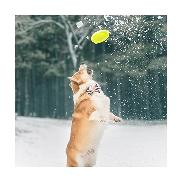 LaRoo Dog Flying Disc Dog Frisbee ABS Material Floatable Dog Toys Pet Frisbee for Puppies, Small, Medium and Large Dogs 9