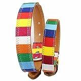 Pet Online Hundehalsband bunt gestreiften pet Dog Collar Legierung Schnalle verstellbar fashion Halsband, 3.0 * 70 CM