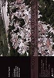 Ricostruire dopo il terremoto. Ediz. illustrata: 2