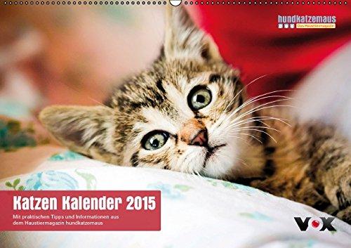 hundkatzemaus - Katzen Kalender 2015 (Wandkalender 2015 DIN A2 quer): Der