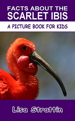 Facts About the Scarlet Ibis (A Picture Book For Kids 142) (English Edition) (Bird Ibis Scarlet)
