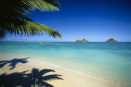 dana-edmunds-design-pics-hawaii-oahu-lanikai-beach-hobie-cat-sailing-near-mokulua-islands-palms-c155