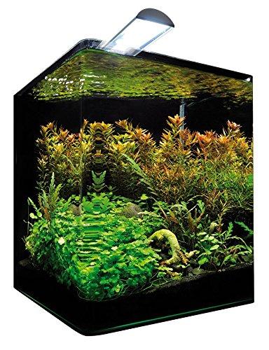 Aquarium Schrank