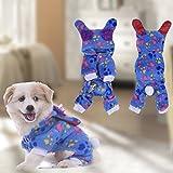 Pijamas adorables del animal doméstico ropa de perro pijamas del perro del paño grueso perro abrigo ropa suave para mascotas (Tipo1-XS)