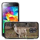 Sólo del estilo celular rígida caliente funda // M00139040 Llama Animal mamifero faunístico cápsida // Samsung Galaxy S5 MINI SM-G800