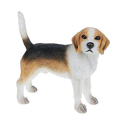 Best razza cane beagle
