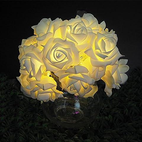ISIYINER LED String Light 2m 10LED PE flower Battery-powered, Or Gardens, Homes, Wedding, Christmas