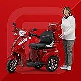 Elektromobil, Seniorenmobil, Dreirad Elektro Roller, Elektrorollstuhl, ECONELO ®