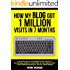 How My Blog Got 1 Million Visits In 7 Months: A practical and straightforward guide to increasing traffic to your blog in your spare time - and without having to pay for advertising
