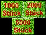 Portal Cool Lenteja de 2.000 Piezas: la lenteja de Agua 1/2 / Paquete de 5 * Lemna Planta Flotante de antialgas Estanque de Peces de Acuario Tanque