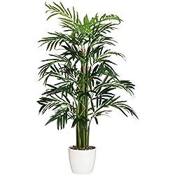 wohnfuehlidee Kunstpflanze Bambus-Palme grün, im Kunststoff-Topf, Höhe ca. 100 cm