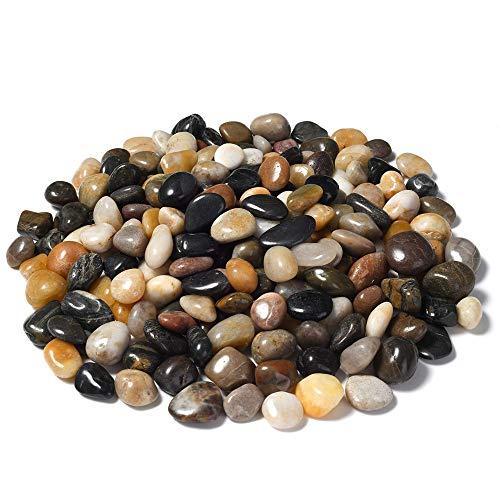 GNSDA Aquarium Kies poliert dekorative Kieselsteine   natürlichen Fluss Rock gemischte Farbe Steine   für Aquarien Outdoor Landschaftsbau Vase Füllstoffe saftig 1 Pfund, 17 Unzen