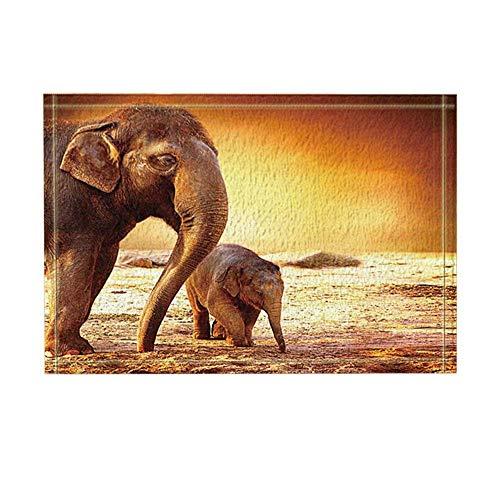 Aliyz Safari Afrikanische Tiere, Dekor, Wildmütter Elefant und Baby Walking-Teppich, rutschfeste Fußmatte, Fußmatte für den Innenbereich, Türmatte, Kinder-Badematte, 39,9 x 59,9 cm, Badezimmer-Zubehör