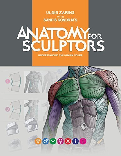 Anatomy for Sculptors, Understanding the Human Figure by Uldis Zarins with Sandis Kondrats (2014-01-01)