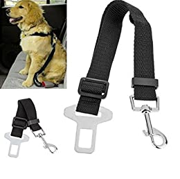Cinturón de Seguridad para Perros, Lomire Cinturón Ajustable de Nylon para Trasportar Mascotas de Viajes Cinturón de Perros de Asiento de Coche Color Negro